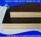La película de la marca de fábrica de China hizo frente a la madera contrachapada para la construcción con precio competitivo