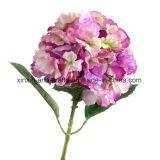 Fiori di seta della decorazione dei fiori artificiali del singolo del gambo Hydrangea reale falso di tocco