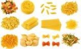 Ligne automatique de production à la machine de macaronis de pâtes