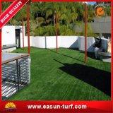 عشب اصطناعيّة لأنّ كرة قدم عشب اصطناعيّة لأنّ حديقة