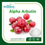 自然なプラントエキス98%のBearberryのエキスベータArbutin、アルファArbutin