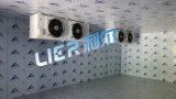 Коммерчески холодная комната и комната замораживателя с регулятором высокой точности цифровым