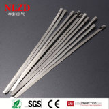La relation étroite en acier de différentes de taille de serres-câble extrémités en acier en acier de fermeture éclair enveloppe le CE RoHS diplôméee