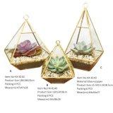꽃을%s 2017 기하학적인 유리제 Terrarium
