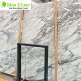 台所および浴室のためのインポートの白い大理石の平板