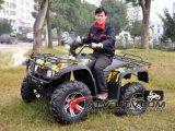 Fabrik Driect, das grosses erwachsenes elektrisches ATV mit attraktiven Preisen verkauft