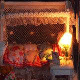 Дом куклы подарка OEM для девушок