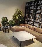 El sofá moderno del cuero de la sala de estar del estilo fijó (D-80-E+C+C+A)