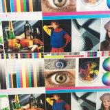 Stampanti di Xuli Digital - stampatrice solvibile di Eco di ampio formato della testa di stampa Dx5 di 1.8m (3PL) per la pubblicità ed i segni
