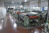 Machine de tissage de treillis métallique en métal (manche shuttless)