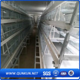 De Plastic Kooi van uitstekende kwaliteit van de Kip