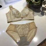 Biancheria profonda di Panty del reggiseno della biancheria intima sexy V di Bodysulpting di alta qualità