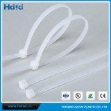 Fascetta ferma-cavo Non-Rilasciabile di nylon bianca, 100mm x 2.5 millimetri