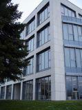 Natürliches Wand-Fliesejura-Beigen-Polnisches zog Kalkstein ab