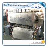 El plástico del animal doméstico de China granula la máquina del estirador