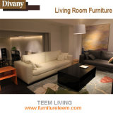 Lebenden modernen Vorhalle-Sofa-Entwurf ausgießen
