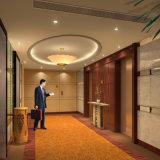ホテルの部屋の外面のための装飾的な壁のクラッディング