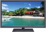 42 pouces DEL TV (42L21)