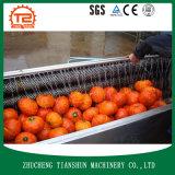 Lavadora continua para el vehículo y la fruta Tsxc-15