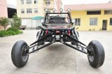 2 Sitze 3000cc Sand Buggy (VST-2014GK-2S)