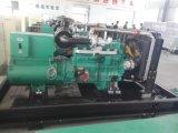 Insieme portatile della pompa ad acqua del motore diesel