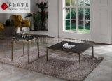 Table basse ronde avec le dessus de marbre de nature et la patte d'acier