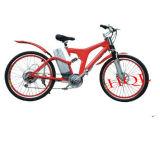 Vélo électrique (HQL-EB3002)