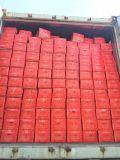 Buona qualità per l'esportazione della carota fresca (316)