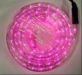 Cinta LED 220V 3528 Hochspannungs-LED Streifen-Licht der einfarbigen einzelnen Mehrfarbenfarben-