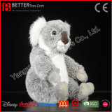 Brinquedo australiano macio bonito do Koala do luxuoso do urso de Koala do animal enchido de ASTM