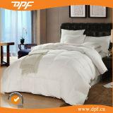 Couette de la Reine dans la couleur blanche de Soild pour l'usage d'hôtel (DPF201547)