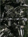 Aço inoxidável AISI 304/316 flanges da garganta