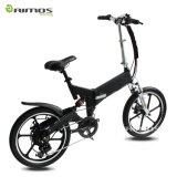 中国20inch方法750W Foldable電気脂肪質のタイヤの自転車