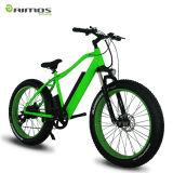 bici gorda de la montaña E de 36V 250W/Ebike/venta eléctrica de la bicicleta