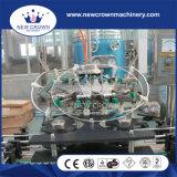 Автоматическая бутылка Rinser сбывания /Direct моющего машинаы бутылки