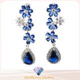 2016の熱い販売の新製品の特別な方法宝石類のイヤリング(E6245)