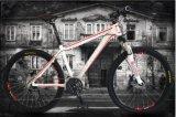 26 bici de montaña de la velocidad de la pulgada 27 con los accesorios de la buena calidad