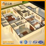 Самая восхитительная и самая красивейшая модель квартиры/модель/место блока модели/нутряные модели