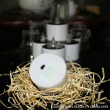 Sin llama amarilla Mini forma LED solares la luz del té Velas