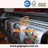 O papel de transferência da boa qualidade no rolo enorme imprimiu para o plástico