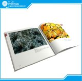 Impressão bem-desenvolvida do livro da cor da alta qualidade