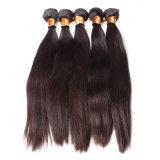 新しい品質の安い毛の拡張インドの実質の毛の拡張(FDX-SM-2016-6)