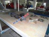 O laser datilografa a máquina de estaca do CNC com plataforma dobro