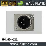Panneau de vente chaud de plaque de mur de module de microphone