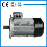 MS Series Three Phase Motor с B5 Flange