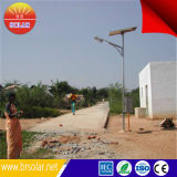 12V/24V Intelligent 8m Поляк 60W Solar Street Light Price