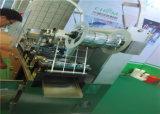 Dpp-250e 찬 알루미늄 호일 물집 포장기