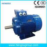Motore elettrico di induzione Squirrel-Cage asincrona a tre fasi di CA di Ye3 90kw-6p per la pompa ad acqua, compressore d'aria