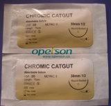 Cer-anerkannte chirurgische Naht mit einzelner Verpackung