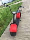 Scooter sans frottoir de Citycoco de mobilité de moteur de C.C avec le moteur 1000W